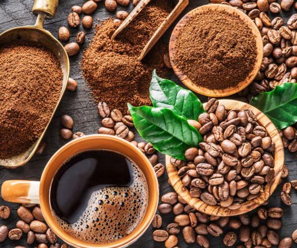 Tìm hiểu về cây cafe